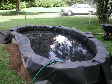 Backyard turtle pond for Diy pond liner ideas